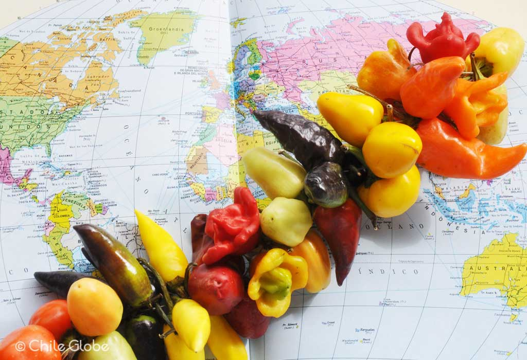 ¿Sabías Que El Chile Es El Segundo Condimento Más Utilizado En El Mundo?