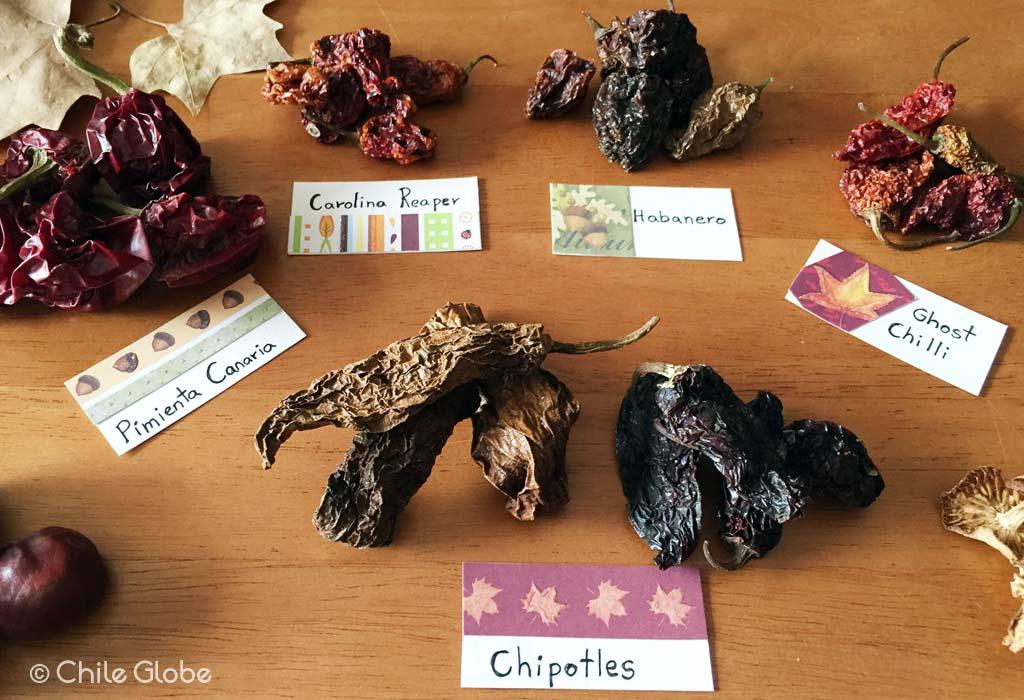 chileglobe-chiles-sin-caducidad2
