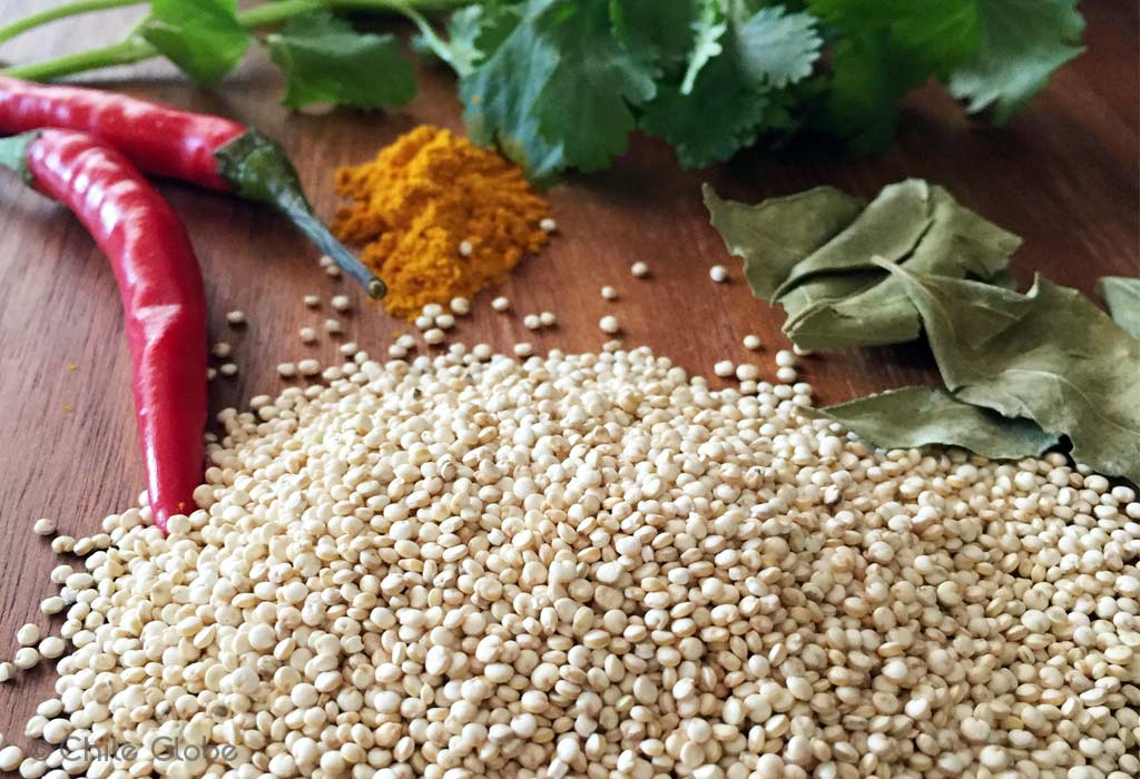 Chileglobe-albondigas-quinoa